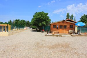Residencia Canina en Zaragoza